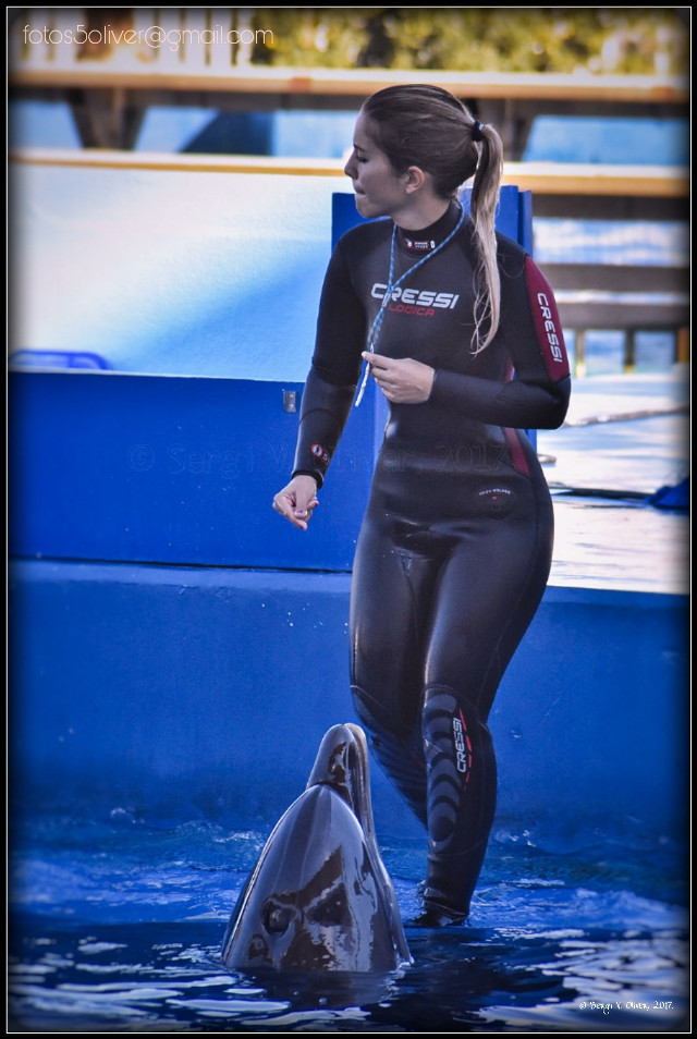 The Oceanogràfic (València, Spain):Dolphin show.   #photography #animals #dolphins #show #dolphinarium #oceanografic #valencia  #people #girl