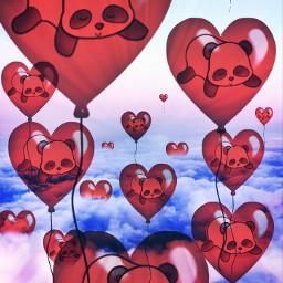 freetoedit panda hearts balloons sky
