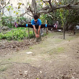 freetoedit hapkido sport