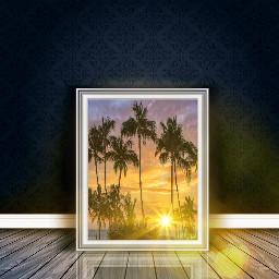freetoedit florida sunsetsilhouette sunny