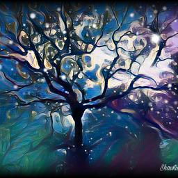tree midnightfilter interesting mysticalnature justneedsaunicorn freetoedit