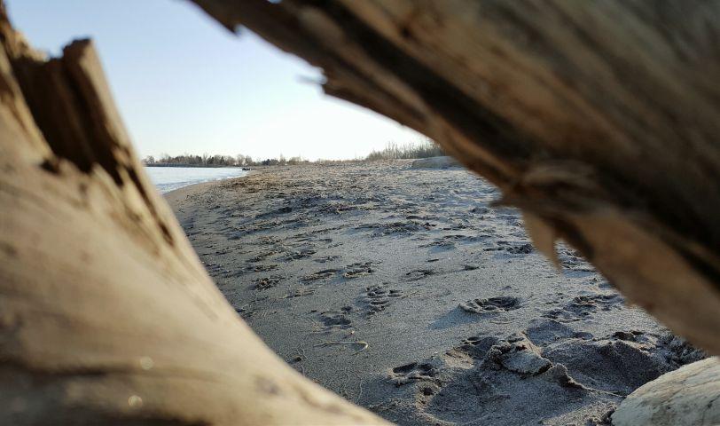 freetoedit photography nature landscape beach