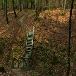 hikingtrails bridge stairs swabian germany